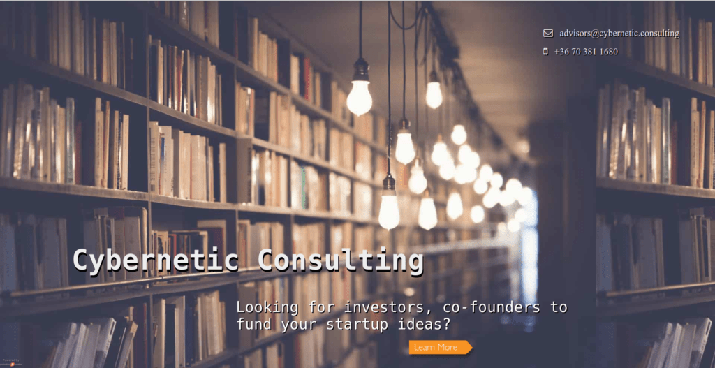 Cybernetic Consulting
