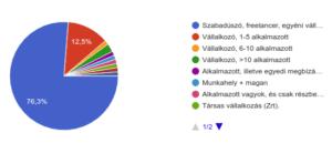 webfejlesztő vállalkozási forma statisztika